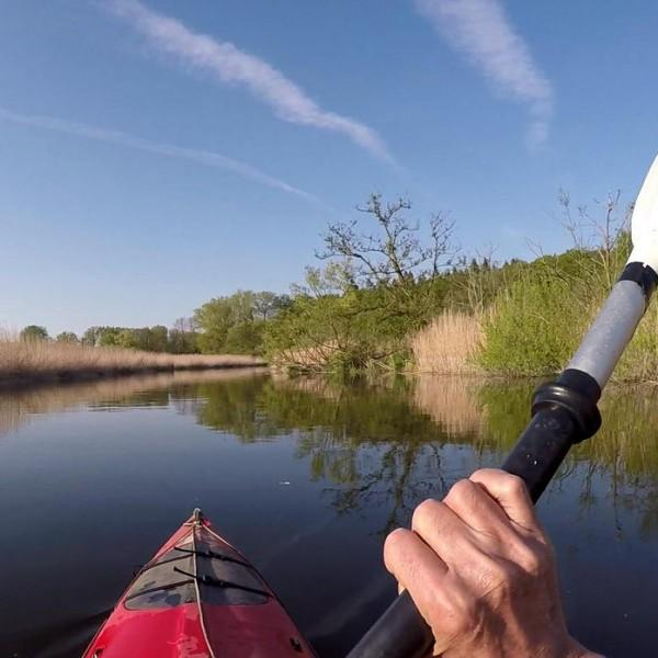 schwentine,kayak paddeln