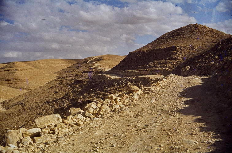 israel, survey, 1979/80