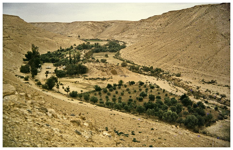 israel 1980, kadesh barnea