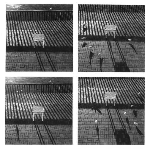 lauenburger fotografien, elbstraße 54