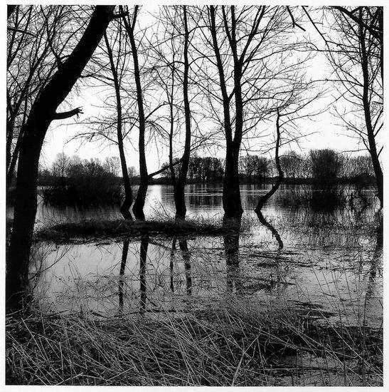 lauenburger fotografien, elbufer, 1990