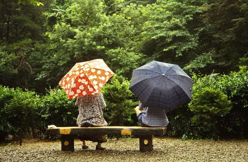kyer yongsan -nationalpark, im regen, südkorea 1991