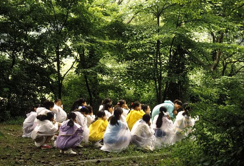 kyer yongsan -nationalpark, südkorea 1991