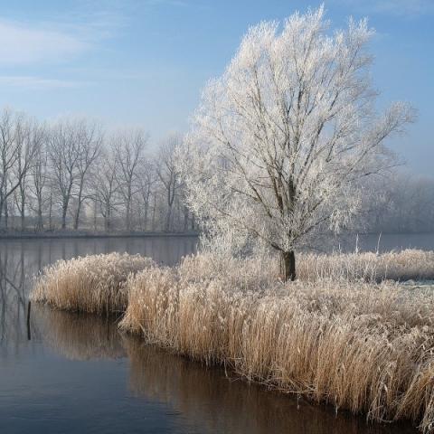 steinschleuse, winterlandschaft an der eider