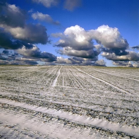 winterlandschaft bei tröndel, kreis plön