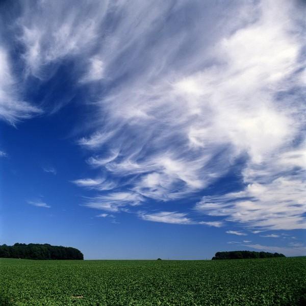 ostholstein, felder und wolken