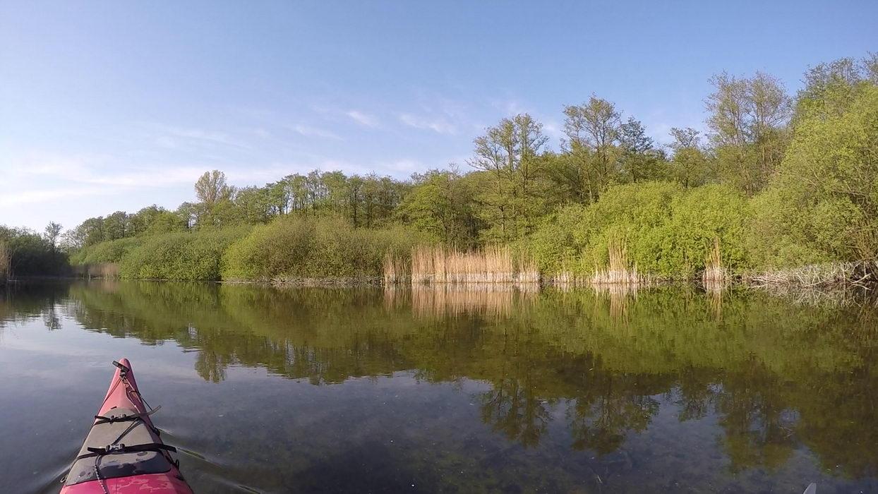 schwentine, kajak paddeln, 2016
