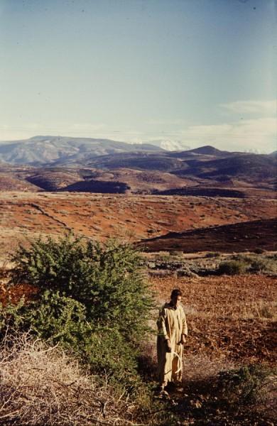 blick auf den hohen atlas, marokko 1968